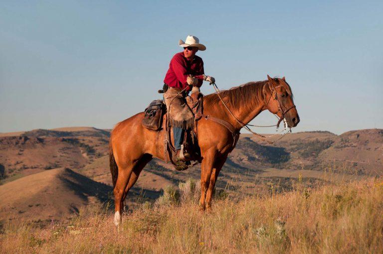 American Rodeo in Oregon is great fun