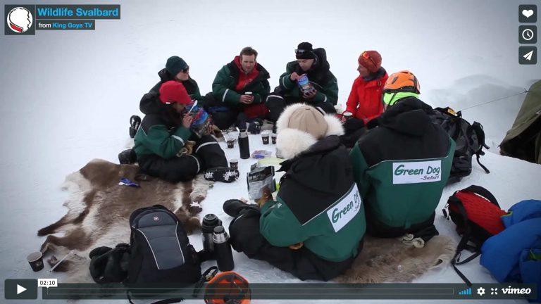 A taste of Svalbard