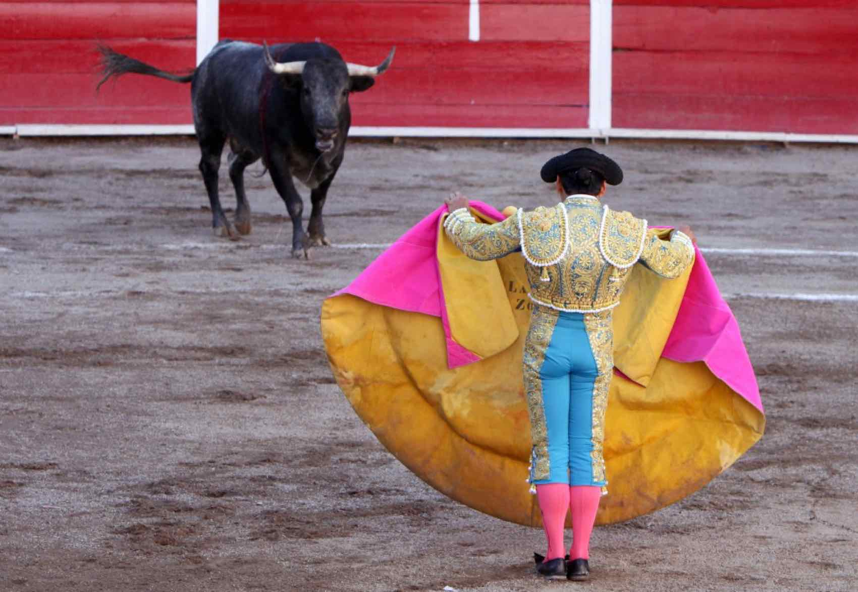 Old tradition: Barcelona banned bullfighting, but Madrid and Andalusia continue to host bullfighting throughout the summer.