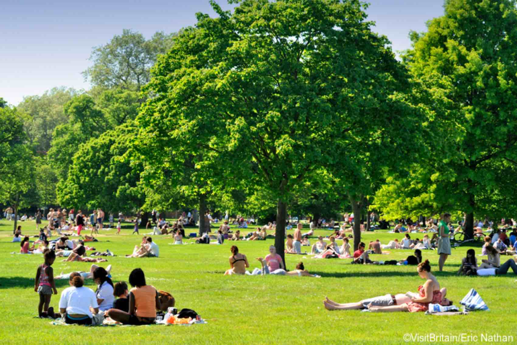 Crowds of people enjoying London's Hyde Park on a sunny summers day.