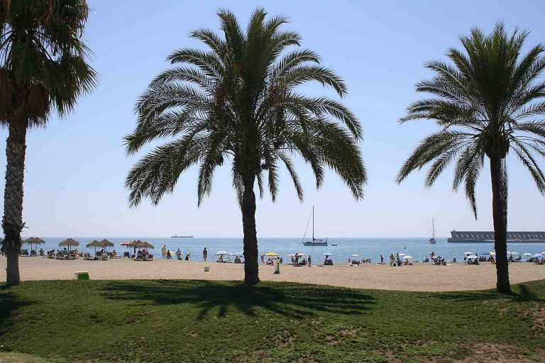 Facts Malaga – Guide to Culture, Food, Beach and Nightlife