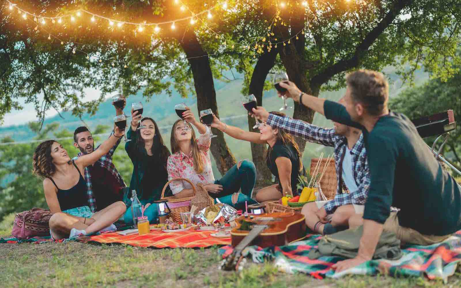 Happy friends having fun at picnic dinner with vintage lights outdoor next vineyard - Young people cheering with red wine on weekend summer night