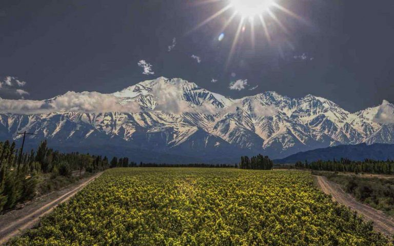 Argentina Wine – Plenty of reasons to drink and travel