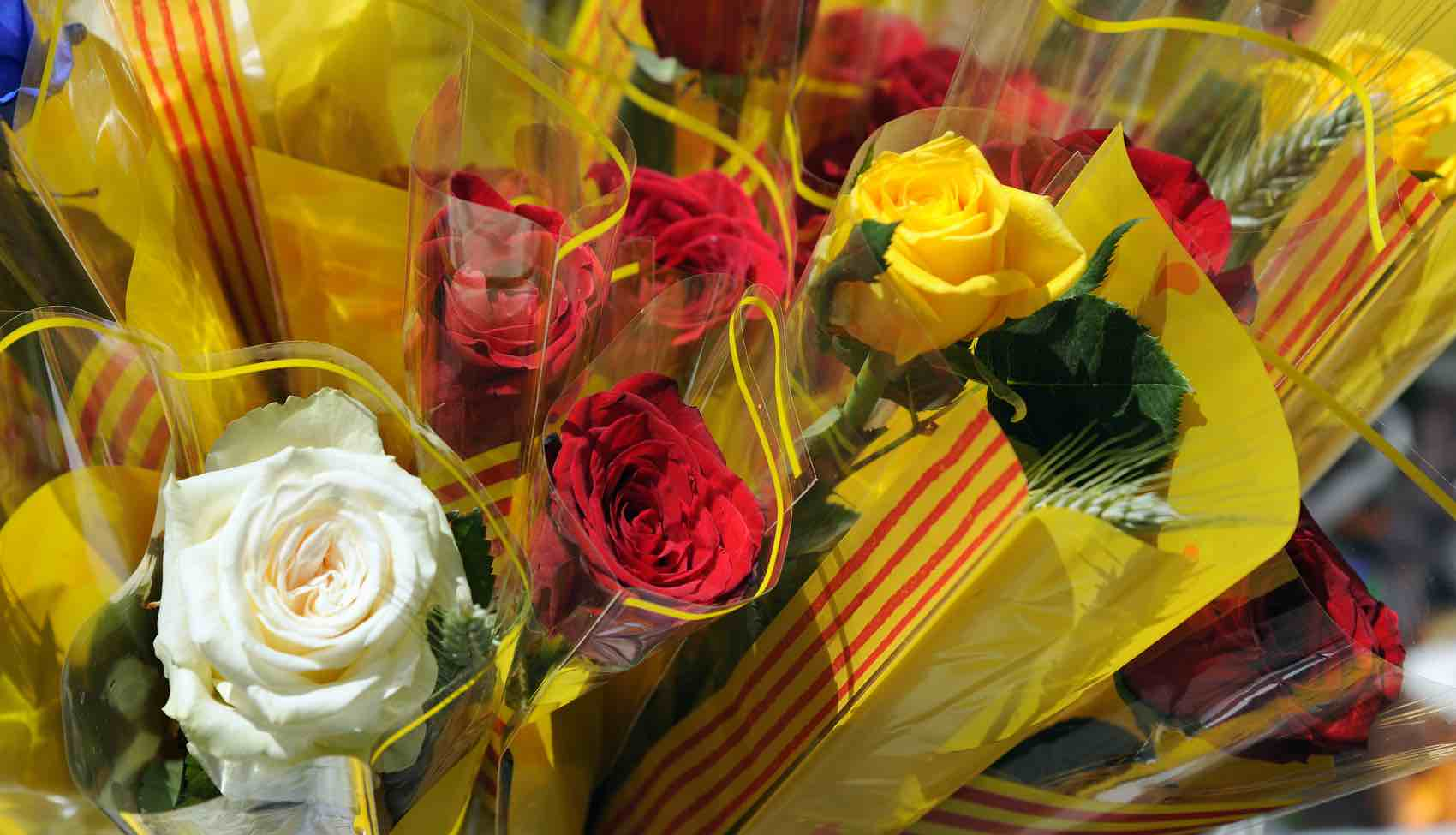 Be there on Sant Jordi Day: The day men give a deep-red rose to their beloved.