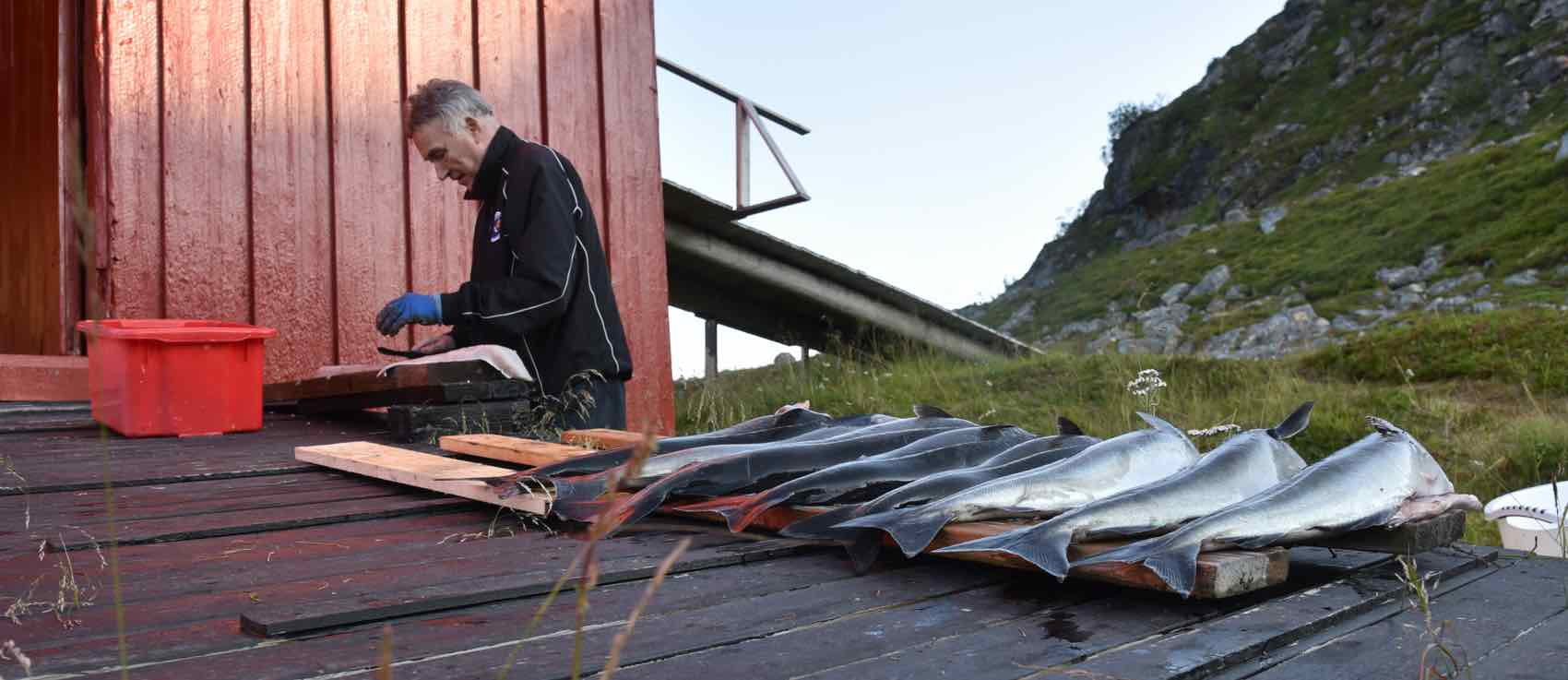"""FISH LUCK: Fishing in the sea, rivers and lakes is part of the summer in this part of Norway. """"Fish is a combination of both luck and skill"""", said bar-keeper Ole Kristian."""
